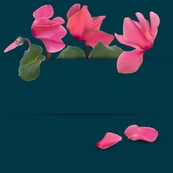 Realistische natuurlijke cyclamen bloemachtergrond