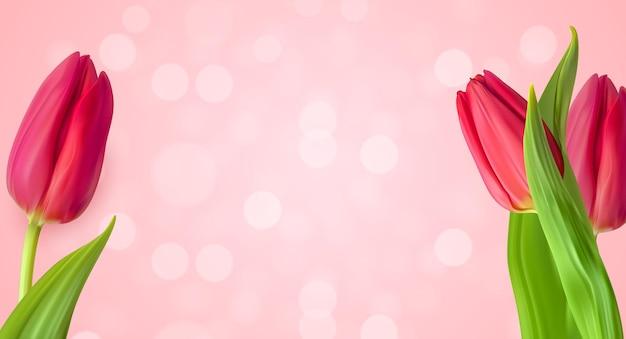 Realistische natuurlijke tulpen bloem achtergrond.