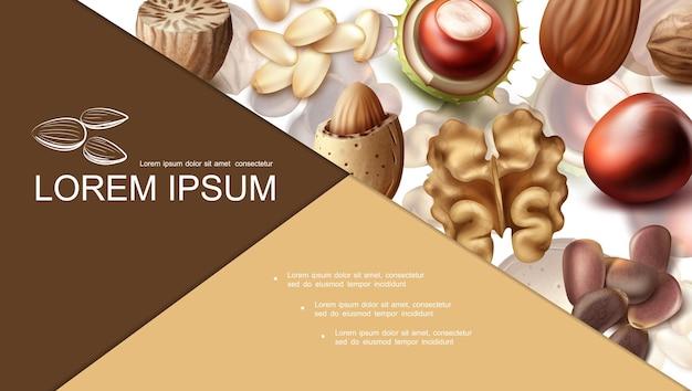Realistische noten kleurrijke compositie met nootmuskaat, hazelnoot, amandel, pinda, walnoot, kastanje, brazilië en cedernoten