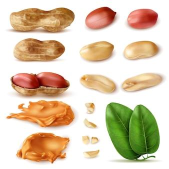 Realistische pinda set geïsoleerde beelden van bonen in shell met groene bladeren en pindakaas