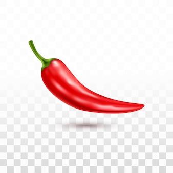 Realistische rode chili