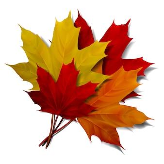 Realistische rode en oranje esdoornbladeren op witte achtergrond. eps10