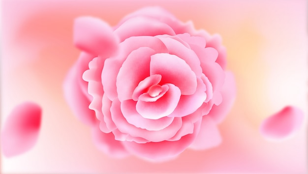Realistische roze bloesem bloem achtergrond