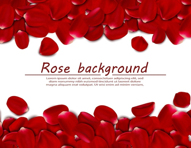 Realistische rozenblaadjes horizontale achtergrond