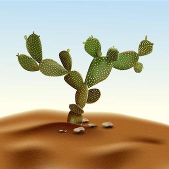 Realistische stekelige peer van de woestijncactus. vijgencactussenplant van woestijn onder zand en rotsen in habitat.