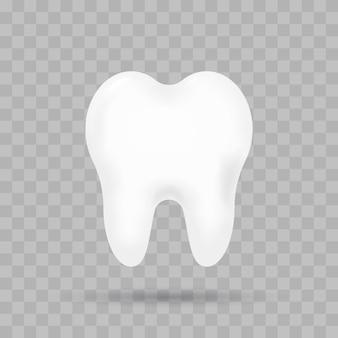 Realistische tand geïsoleerd.