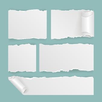 Realistische verzameling gescheurd papier