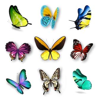 Realistische vlinder-set
