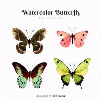 Realistische vlindersinzameling