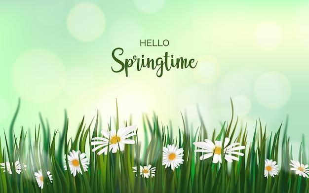 Realistische voorjaar achtergrond