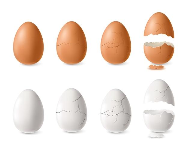 Realistische witte en bruine gebarsten en open eierset geïsoleerde illustratie