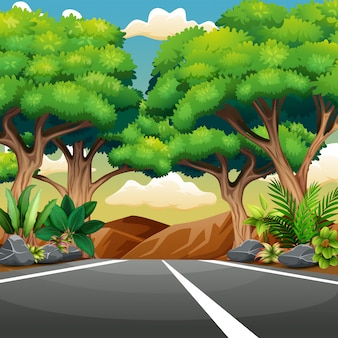 Rechte verharde weg met boslandschap