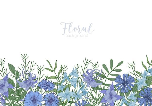 Rechthoekige achtergrond versierd met blauwe wilde bloeiende bloemen en bloeiende kruiden weide aan de onderkant