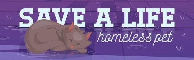 Red het leven dakloze huisdier poster met slapende kat