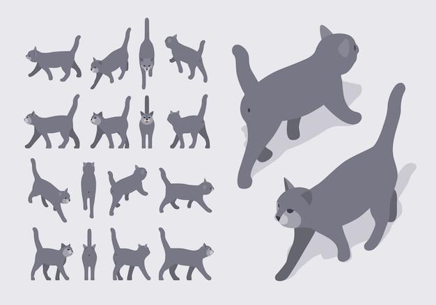 Reeks isometrische grijze lopende katten