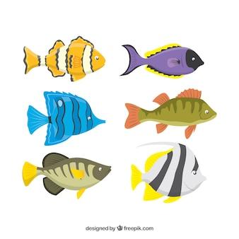 Reeks kleurrijke vissen in vlakke stijl