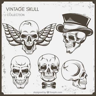 Reeks uitstekende schedels