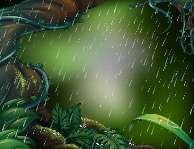 Regenende scène in het diepe bos
