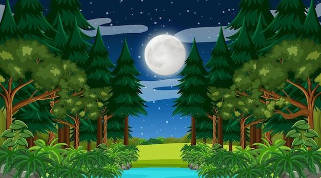Regenwoud of tropisch bos bij nachtscène met de maan aan de hemel