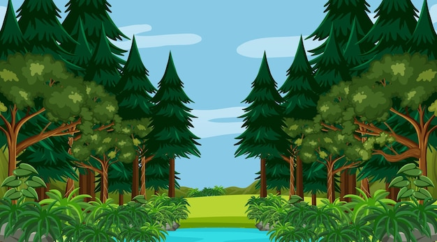 Regenwoud of tropisch bos overdag at Gratis Vector