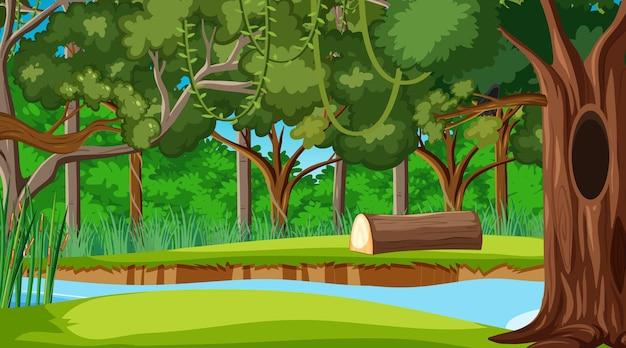 Regenwoud of tropisch bos overdag scène Gratis Vector