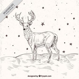 Rendier schets achtergrond met sterren