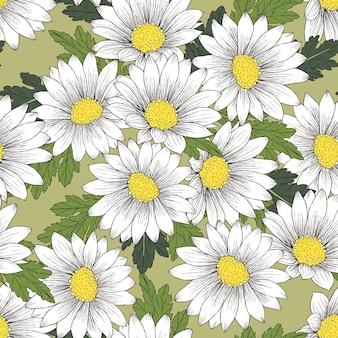 Retro kleurrijk madeliefje naadloos patroon over groene achtergrond