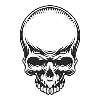 Retro vintage schedel