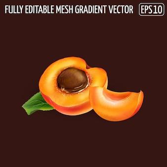 Rijpe abrikozenhelft met pit en een plakje op een donkere achtergrond.