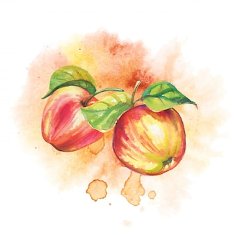 Rijpe appels in aquarel