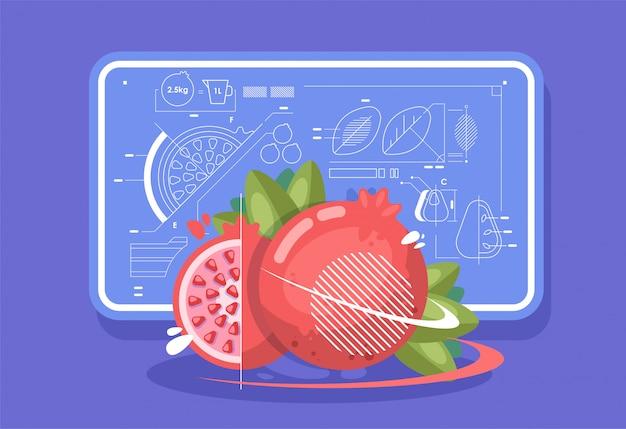 Rijpe granaatappel, gesneden fruit. achtergrond in de stijl van technische tekeningen.