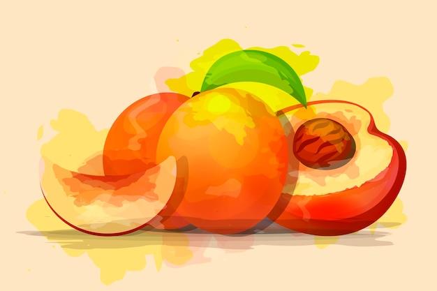 Rijpe perziken, geheel en plakjes. vector illustratie. op witte achtergrond