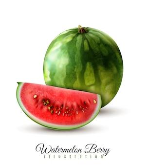Rijpe realistische gehele watermeloen vectorillustratie