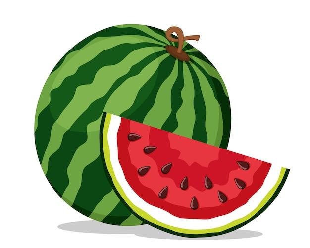 Rijpe watermeloen en sappig stuk op een witte achtergrond. geïsoleerd