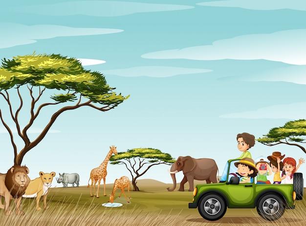 Roadtrip in het veld vol met dieren