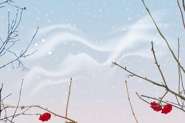 Rode bessen en takken van lijsterbes op achtergrond van de winterhemel.