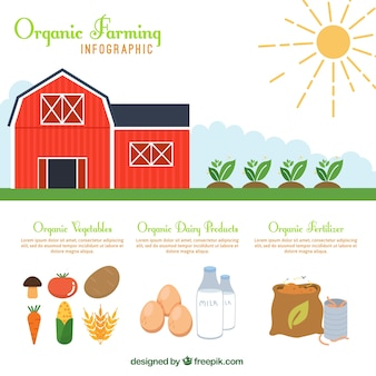 Rode boerderij en biologisch voedsel infografie