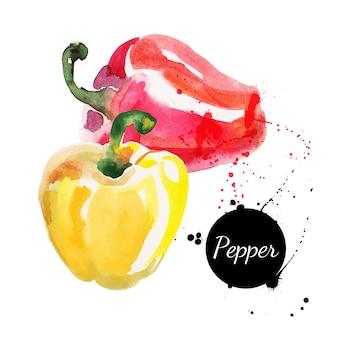 Rode en gele paprika's. hand getekend aquarel op witte achtergrond. vector illustratie