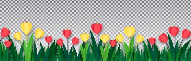 Rode en gele tulpen in het gras op geïsoleerd