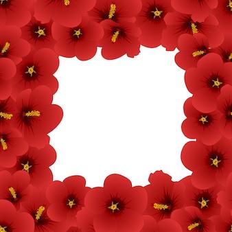 Rode hibiscus - roos van sharon border2