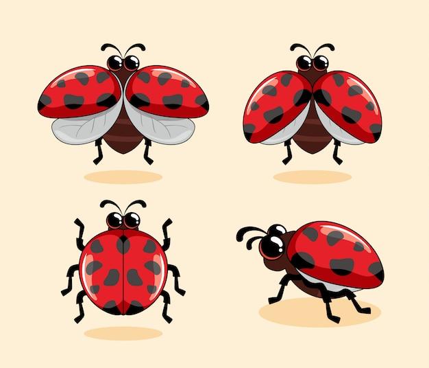 Rode lieveheersbeestje cartoon coccinellidae schattige dieren lieveheersbeestje