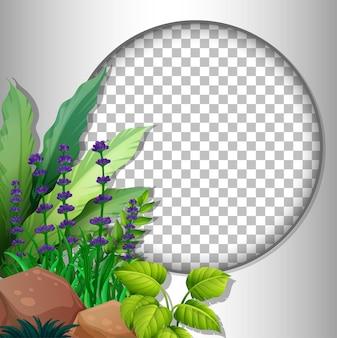 Rond frame transparant met sjabloon voor tropische bladeren