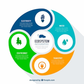 Rond infographic ecosysteemconcept