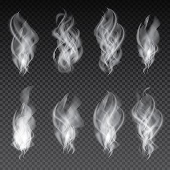 Rook set geïsoleerd op transparante achtergrond. vectorillustratie.
