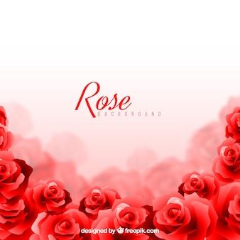 Rose achtergrond met vaag effect