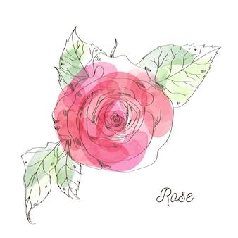 Rose illustratie voor valentijn grafisch ontwerp