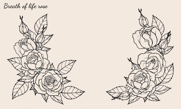 Rose ornament vector set met de hand tekening