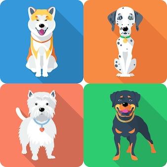 Rottweiler en west highland white terrier ras gezicht pictogram plat ontwerp