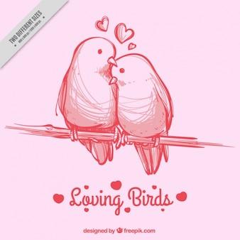 Roze achtergrond met de hand getekende vogels