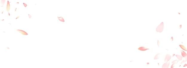Roze apple petal vector panoramische achtergrond. witte lente perzik bloemblaadje felicitatie. sakura bloemblaadje 3d-sjabloon. air rose petal patroon.